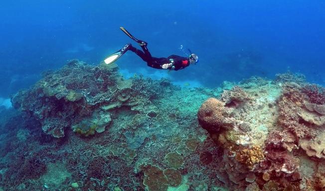 Desktop great barrier reef