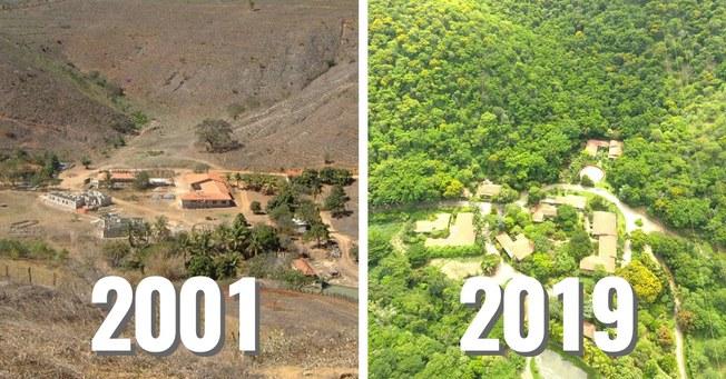 Desktop sebastiao salgado reforestation thumbnail