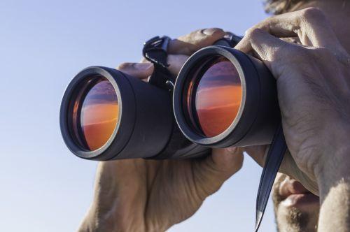Desktop binoculars look ahead xl 500 332 80