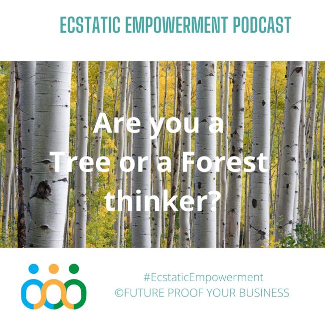 Desktop tree or forest  1