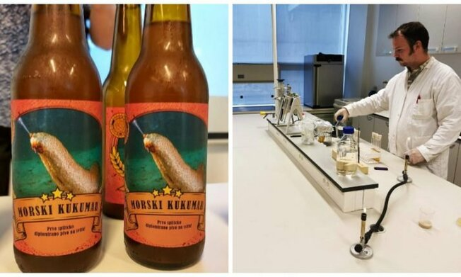 Desktop croatia beer sea yeast sea cucumber 715x429