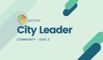 Influex store city leader 2